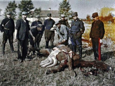 Nine French soldiers are investigating a fatally injured horse on the Western front during World War I.
