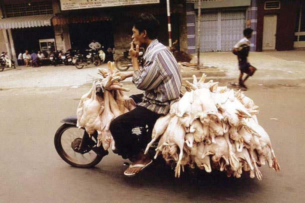 Overloaded-Vietnamese-Motorbikes-That-Defy-Logic-by-Photographer-Hans-Kemp-7