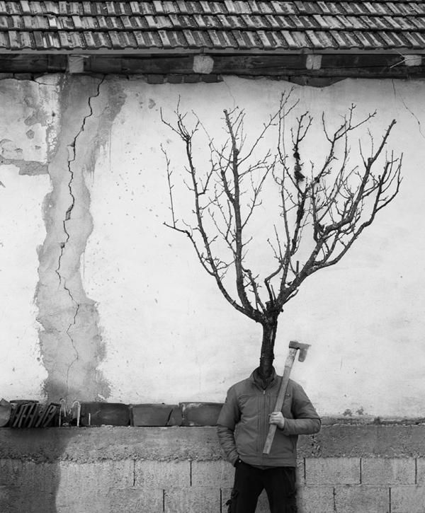 آدم درخت ها